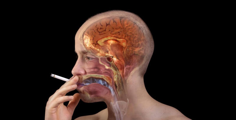How Does Nicotine Effect The Brain?